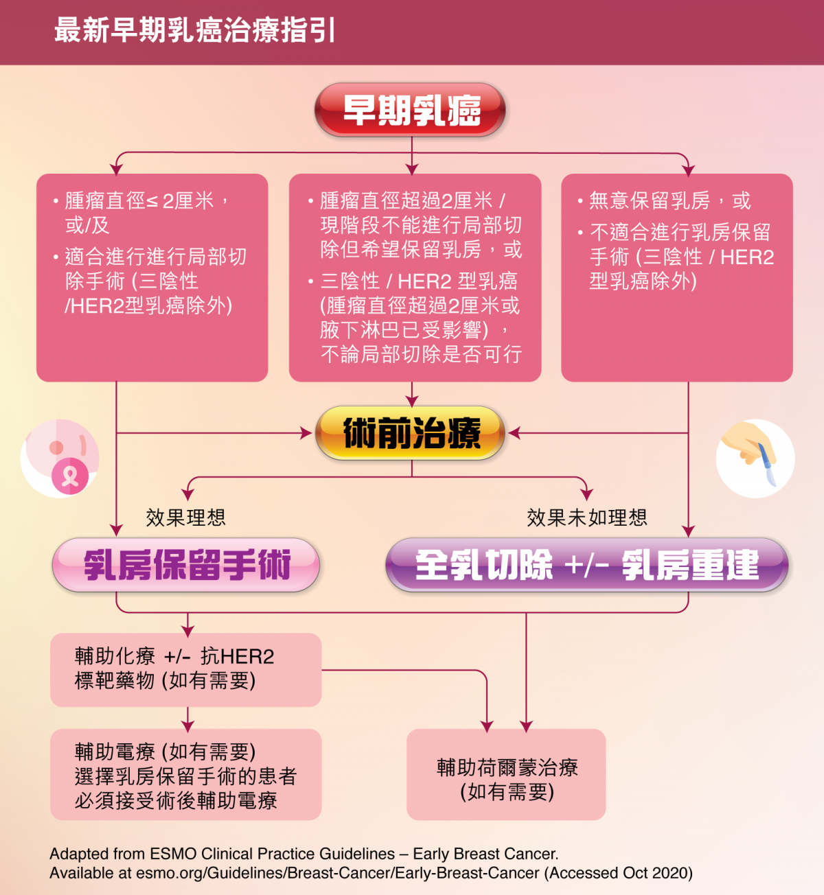 早期乳癌不同乳癌分類的國際乳癌治療指引